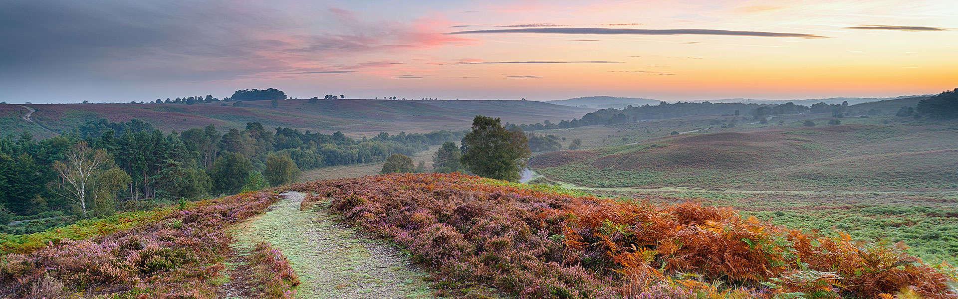 Hampshire - Perfektes Urlaubsziel für Aktivurlaub