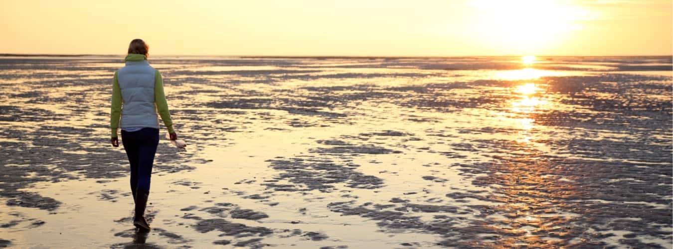 Ostsee und Nordsee - Blick auf das Wattenmeer