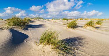 Im Amrum Urlaub eine der schönsten Nordseeinseln genießen.